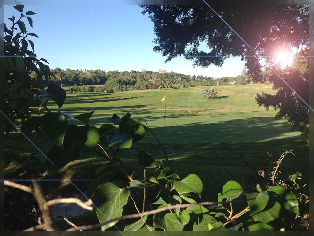 Golf-Lomas-de-Campoamor